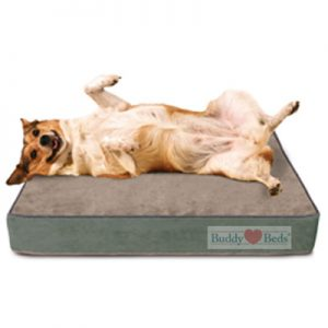 Sale $149 - Gel Memory Foam Dog Beds