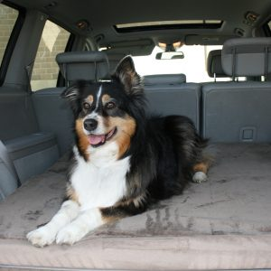 Memory Foam Travel Dog Bed Sale